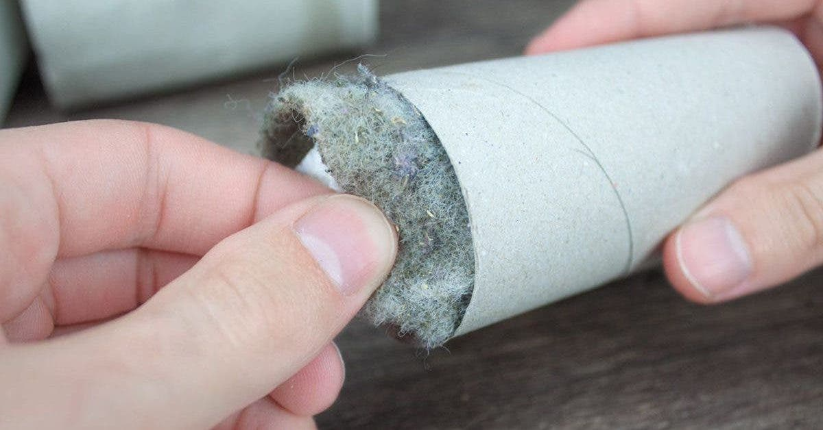 10-astuces-magiques-avec-du-papier-toilettes
