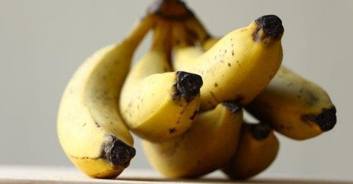 10 choses incroyables que la banane fait a votre corps 1