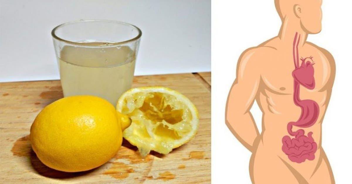 10 choses sur le citron quon ne vous a pas encore dit 1