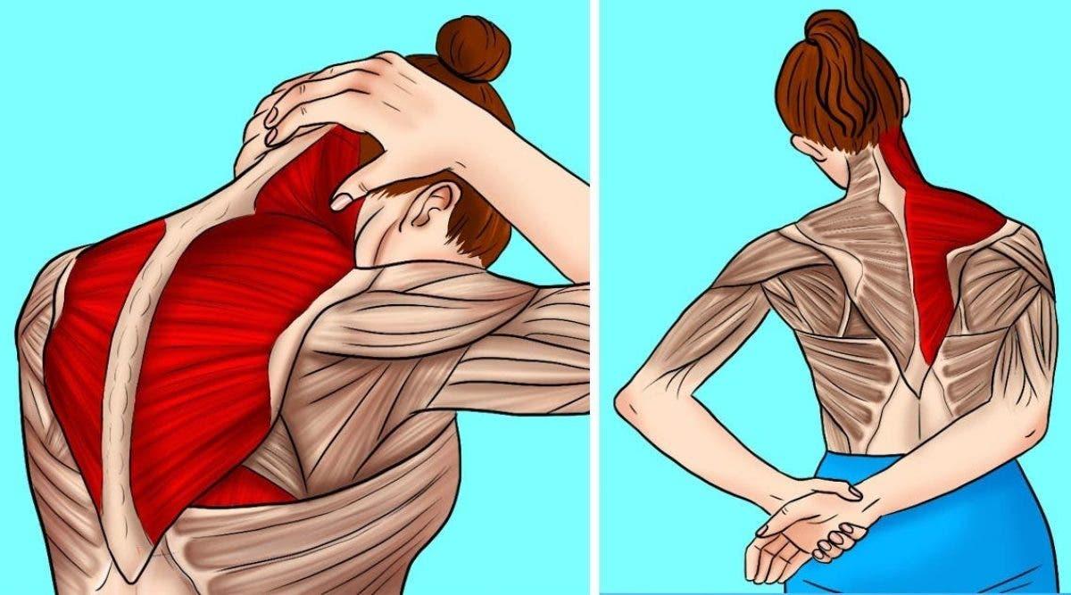 10 étirements pour soulager les tensions du cou et des épaules