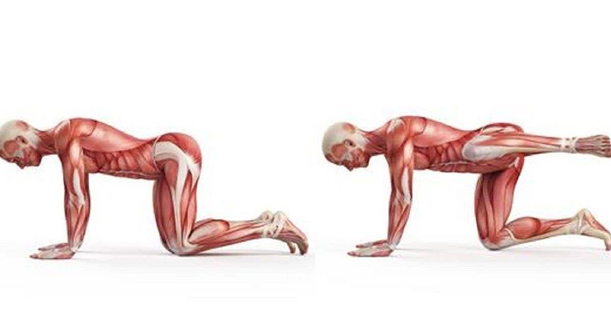 10 exercices pour soulager les douleurs de la colonne vertebrale lorsque lon reste assis trop longtemps 1