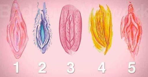 10 faits sur le vagin que vous devez savoir surtout si vous êtes un homme