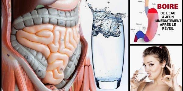 Buvez de l'eau à jeun le matin