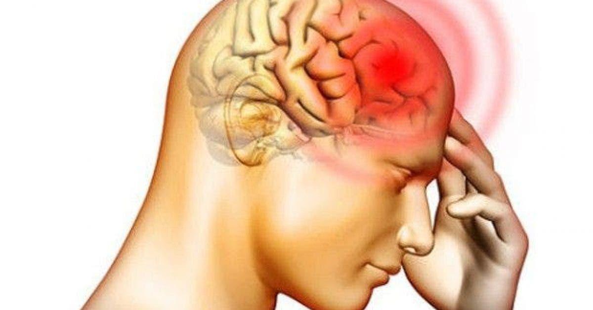10 signes que vous avez une intolerance a lhistamine et les 10 aliments a eviter 1