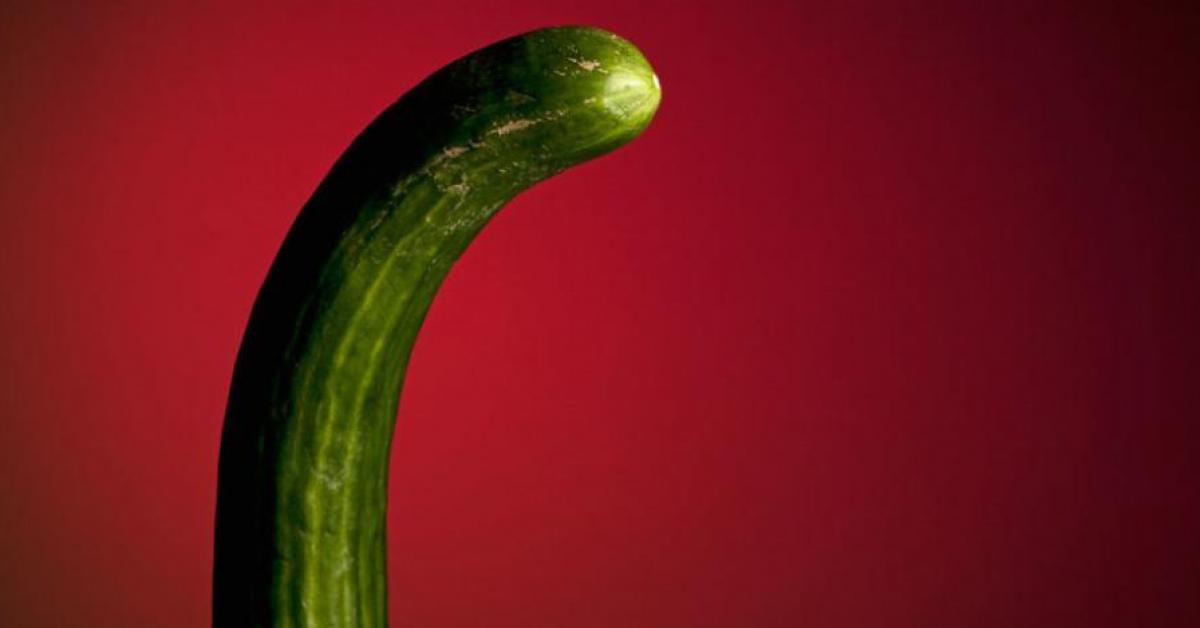 10 verites a propos du penis qui vous laisseront sans voix 1
