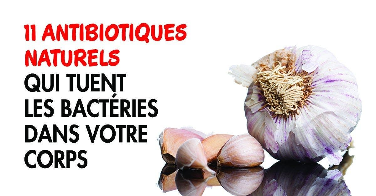 11 antibiotiques naturelles qui tuent les bactéries dans votre corps