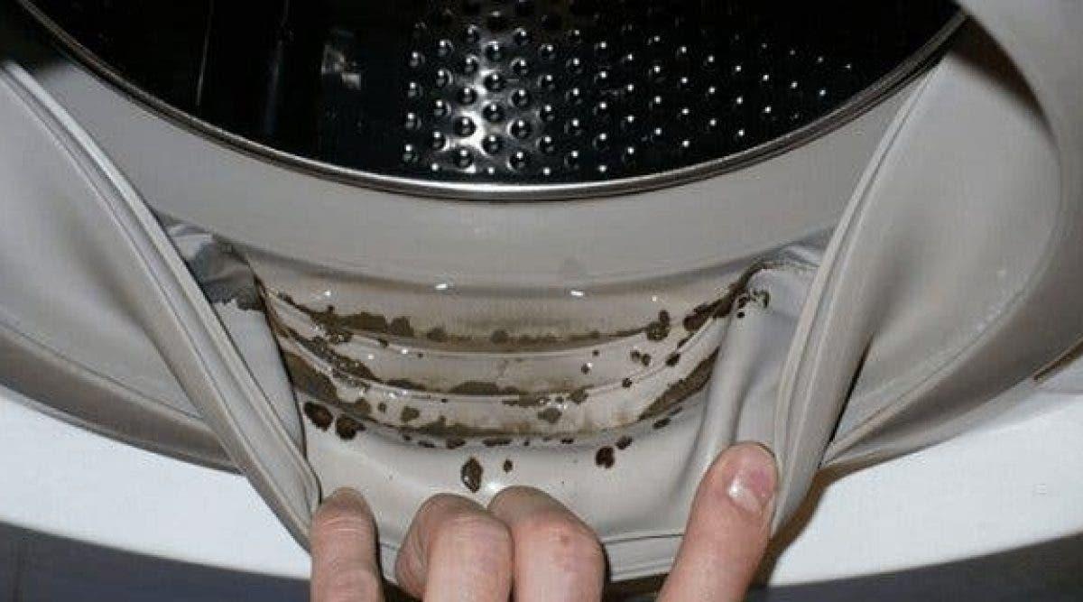 11 erreurs de lavage en machine que tout le monde fait