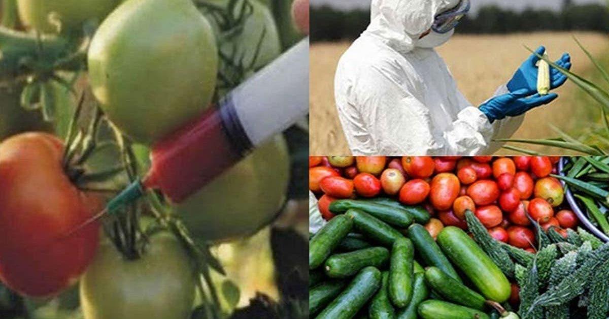 12-aliments-les-plus-contamines-par-les-pesticides