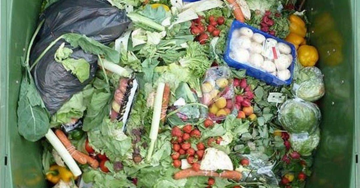 13 facons de reduire le gaspillage alimentaire 14