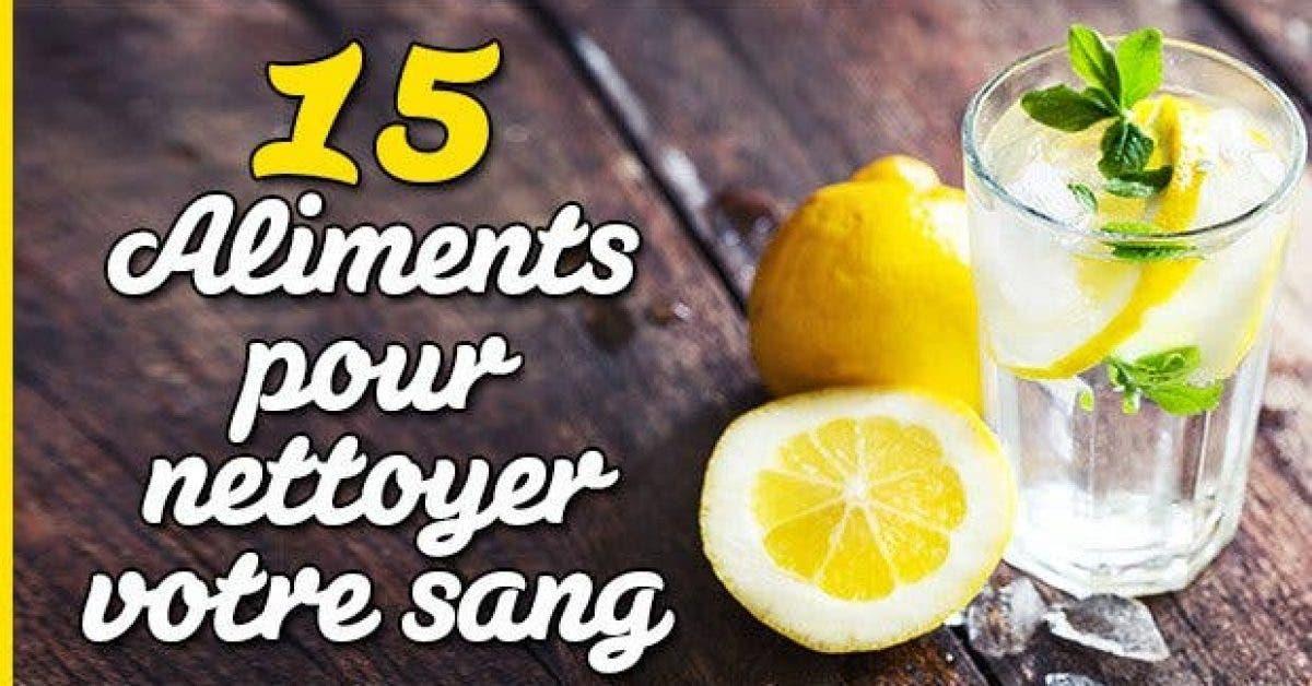 15 aliments pour nettoyer votre sang11