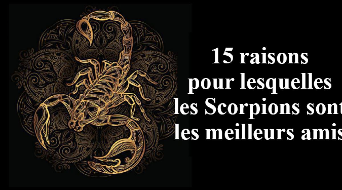 15 raisons pour lesquelles les Scorpions sont les meilleurs amis