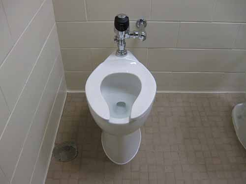20-choses-incroyables-que-vous-ne-savez-pas-sur-les-toilettes-1