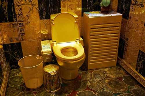 20-choses-incroyables-que-vous-ne-savez-pas-sur-les-toilettes-18