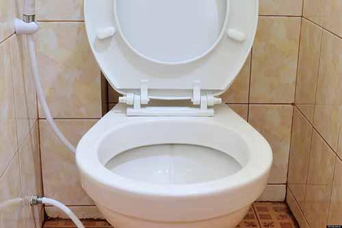 20-choses-incroyables-que-vous-ne-savez-pas-sur-les-toilettes-19