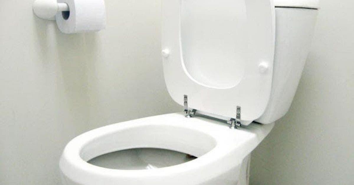 20 choses incroyables que vous ne savez pas sur les toilettes 21