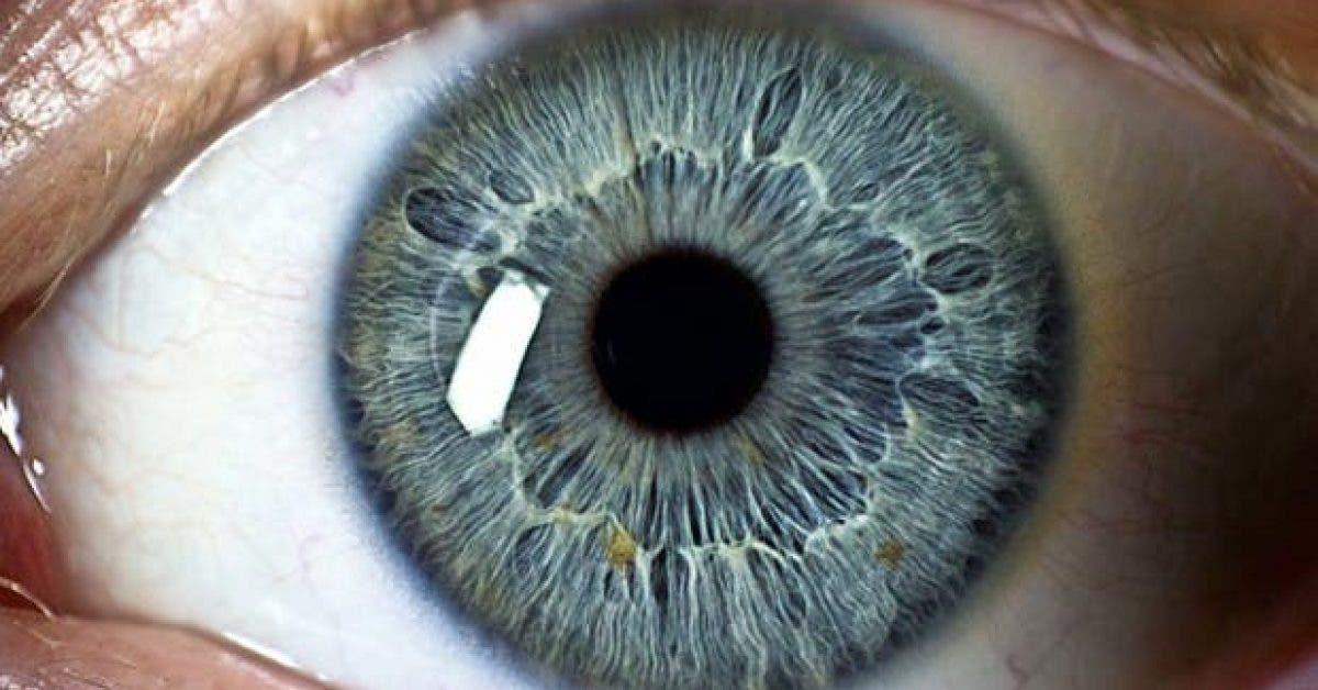 20 choses incroyables sur les yeux que vous ne connaissez pas 1