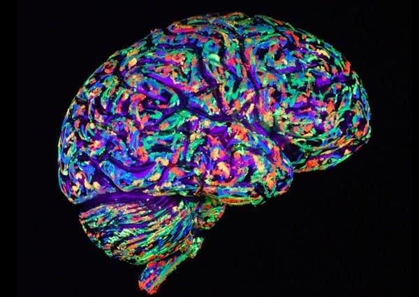 20-choses-que-vous-ne-savez-probablement-pas-sur-le-cerveau-humain18