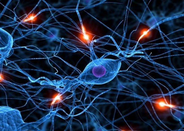 20-choses-que-vous-ne-savez-probablement-pas-sur-le-cerveau-humain19