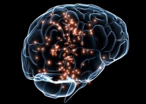 20-choses-que-vous-ne-savez-probablement-pas-sur-le-cerveau-humain8