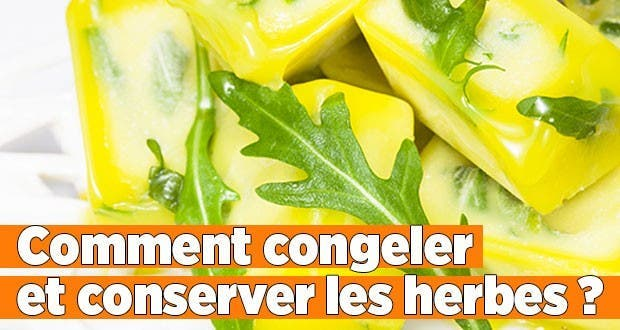 Comment congeler conserver les herbes - Comment conserver les tomates du jardin ...
