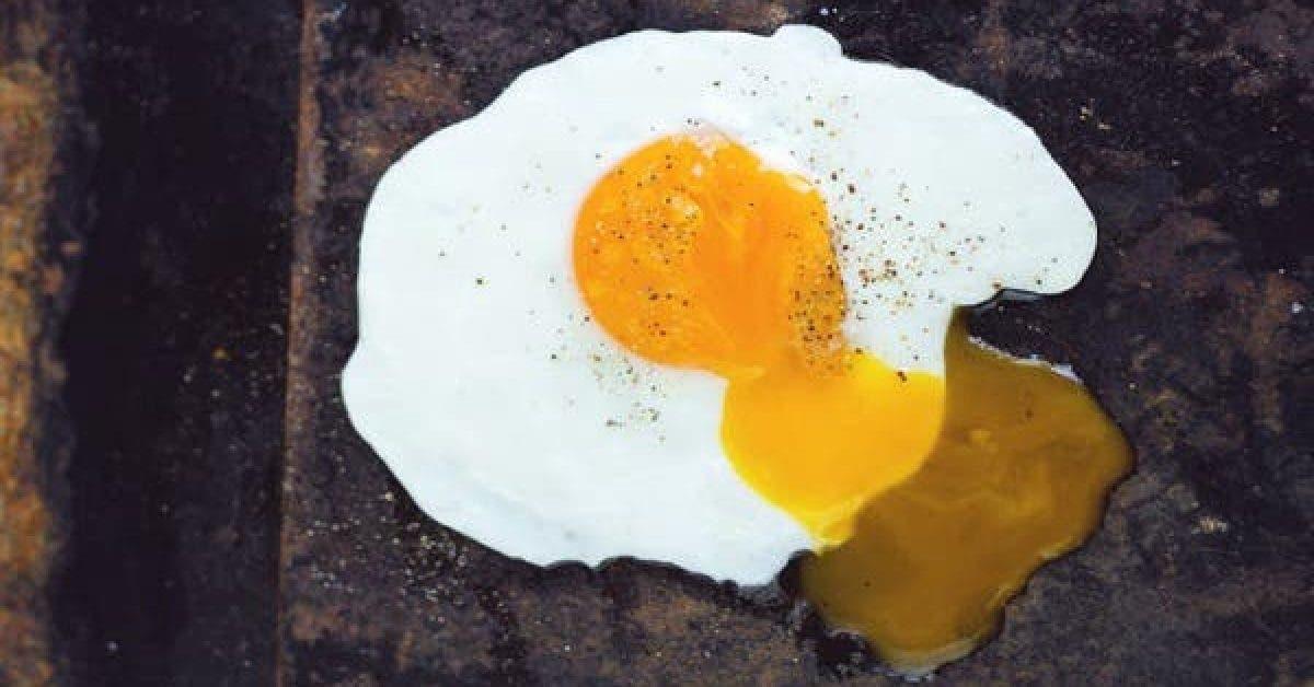 4 aliments gras bons pour la sante que les nutritionnistes recommandent 1