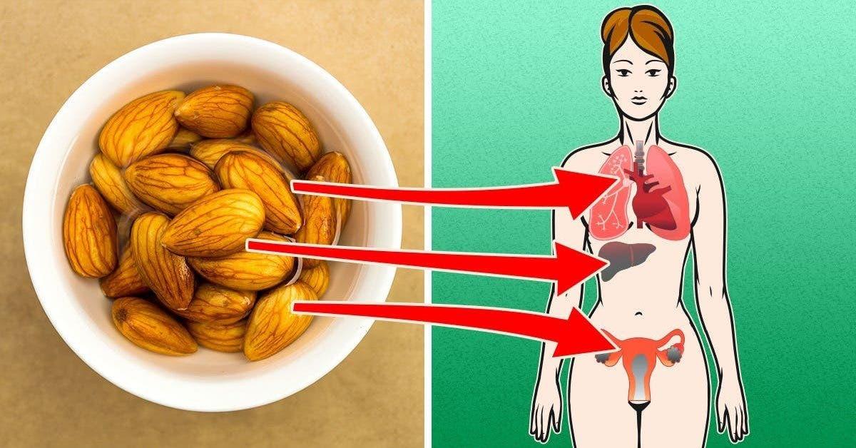 4 choses qui arrivent a votre corps lorsque vous mangez des amandes tous les jours 1