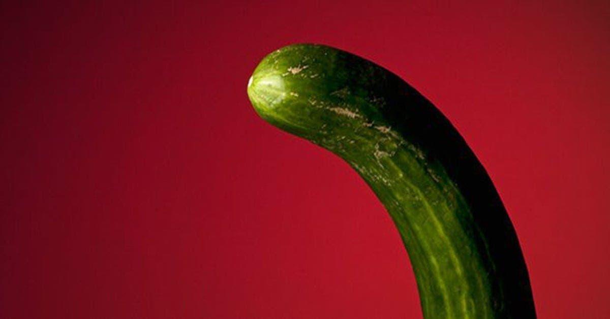 4 choses sur le penis que les femmes ignorent