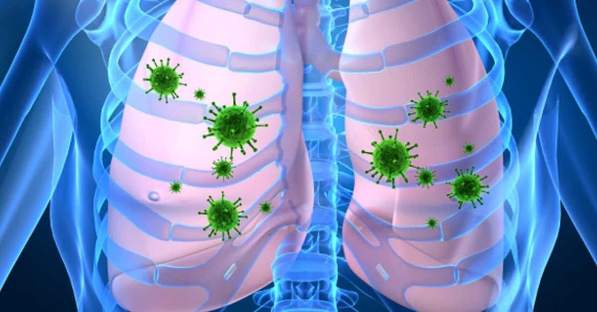 4-conseils-pour-nettoyer-naturellement-vos-poumons-et-eviter-les-maladies