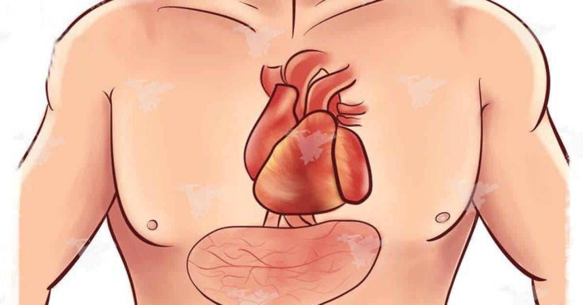 4 signes avant-coureurs d'une crise cardiaque que vous devez absolument connaître