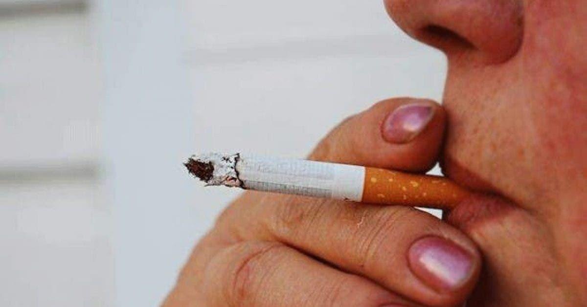 5 aliments qui nettoient votre corps de la nicotine 1