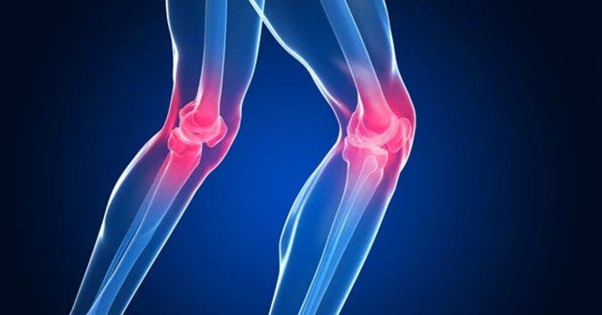 5 exercices pour soulager la douleur au genou en 6 jours 1