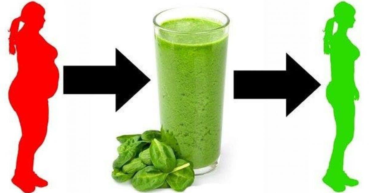 5 recettes de smoothies aux epinards pour perdre du poids et purifier votre peau 1
