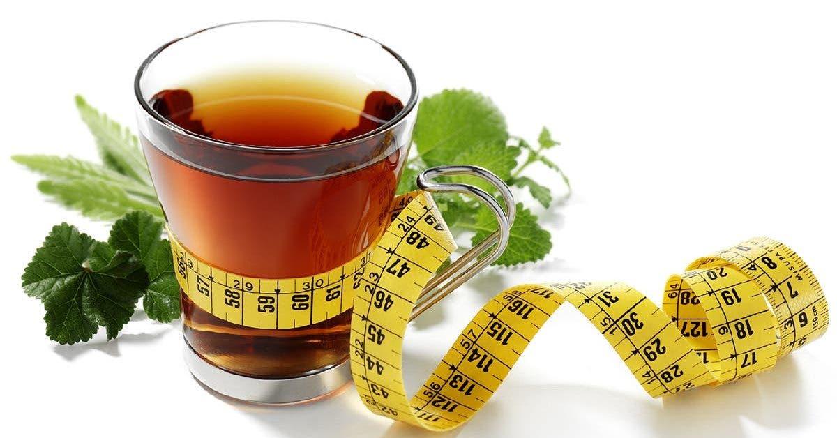 5-recettes-de-thes-detox-pour-perdre-du-poids-et-stimuler-votre-metabolisme