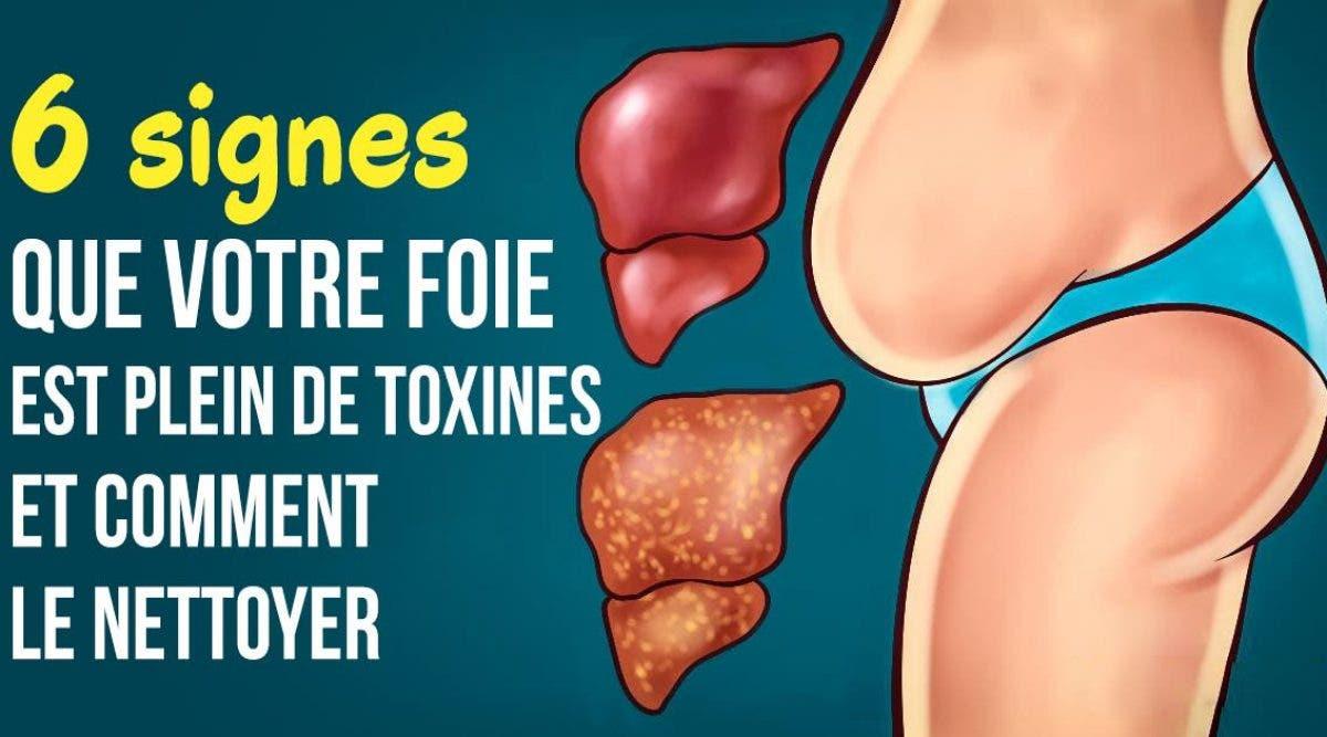 signes que votre foie est plein de toxines et comment le nettoyer