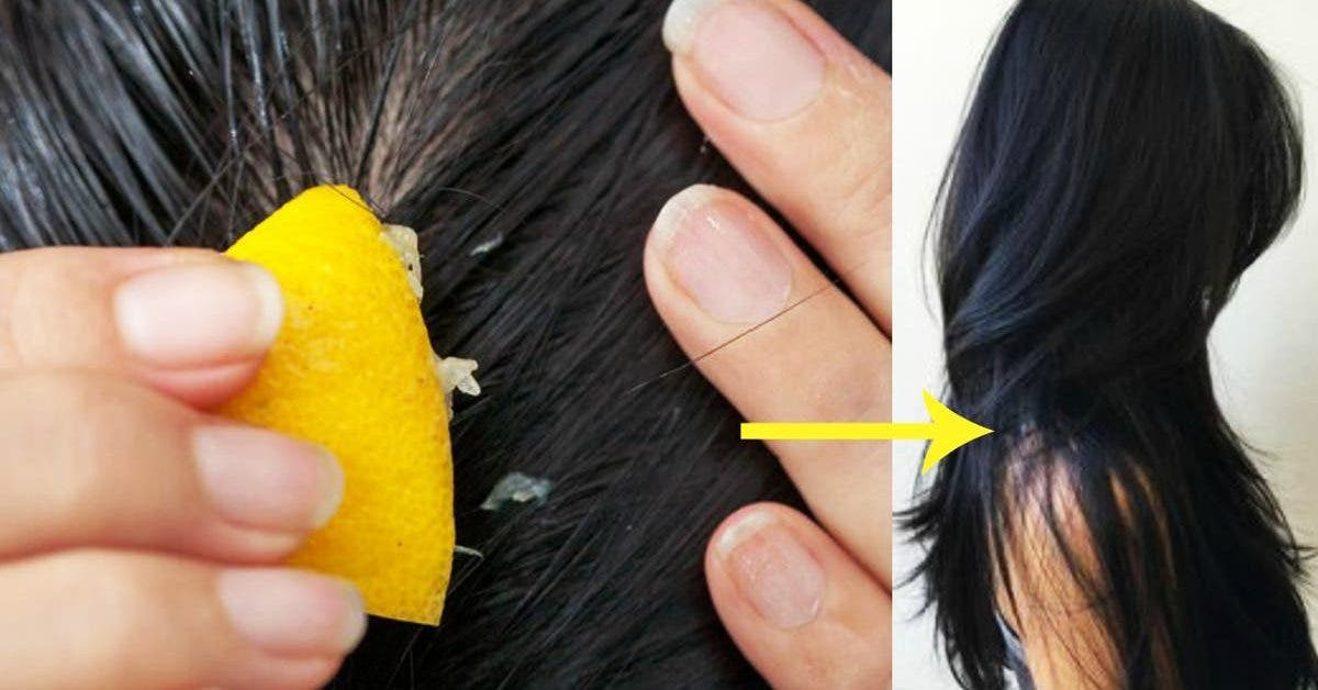 cheveux citron