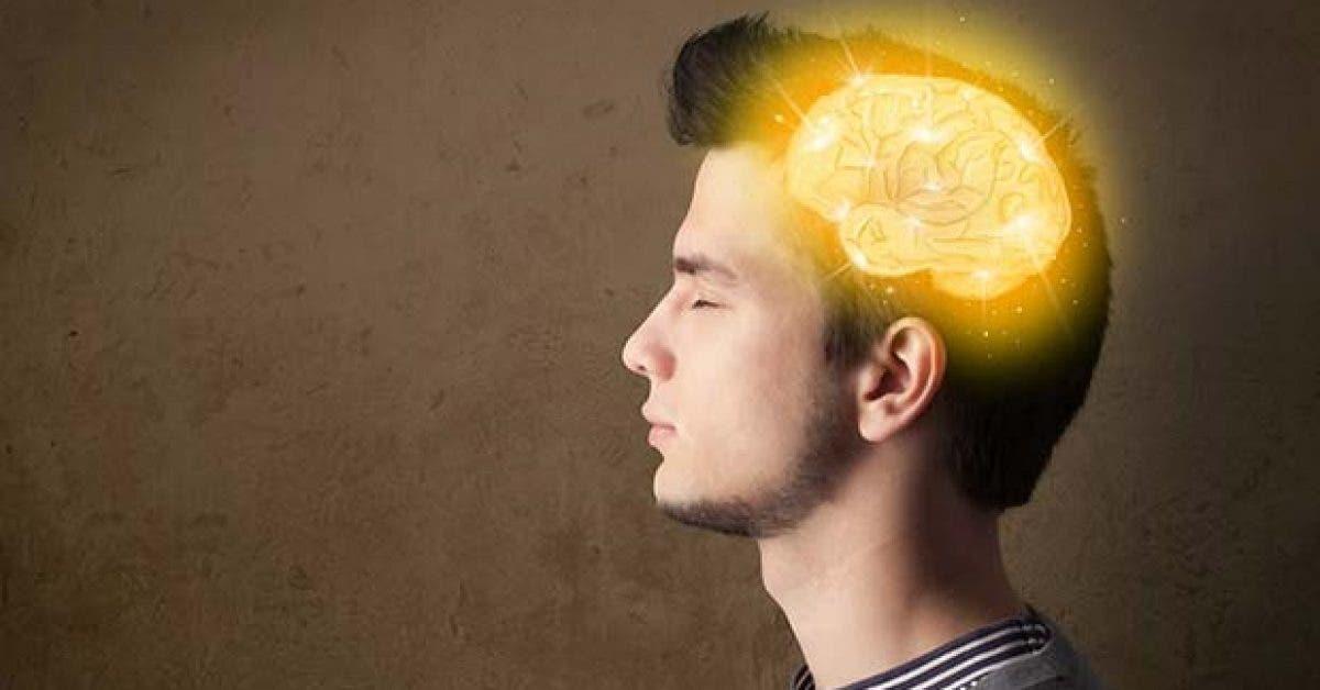 7 Habitudes mortelles qui affectent votre cerveau11