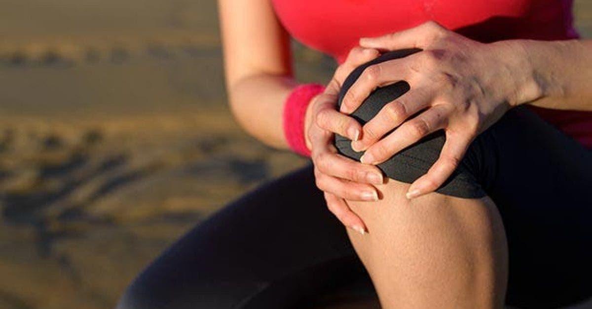 7 Herbes contre les douleurs articulaires11