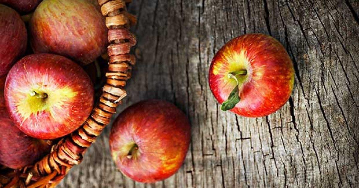 7 aliments brule graisses11