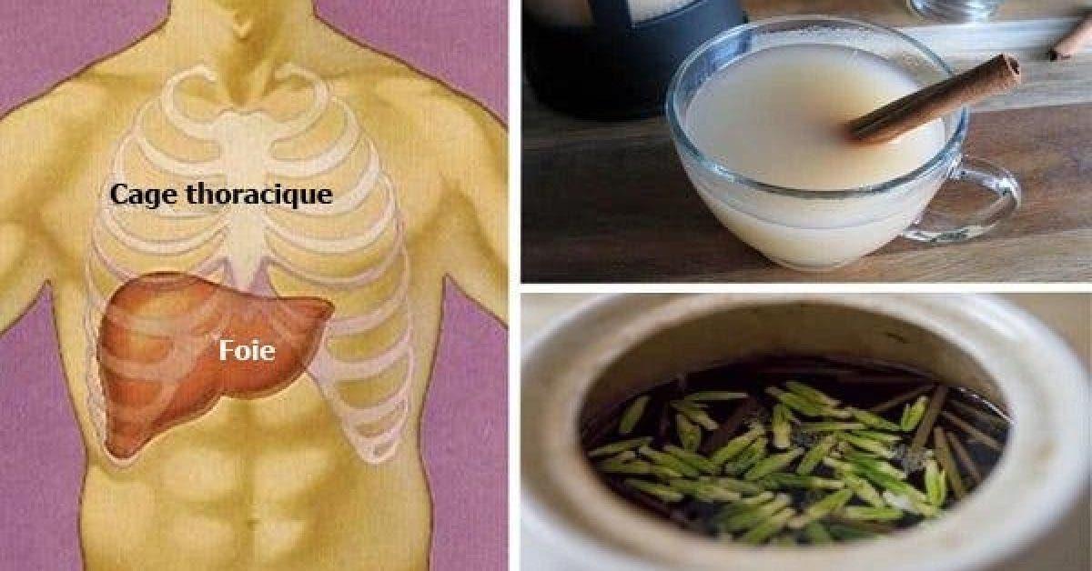 7 aliments detox qui nettoient le foie et aident a perdre du poids 1 1