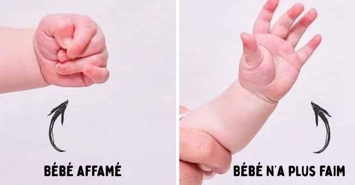 gestes pour décoder le language des bébés