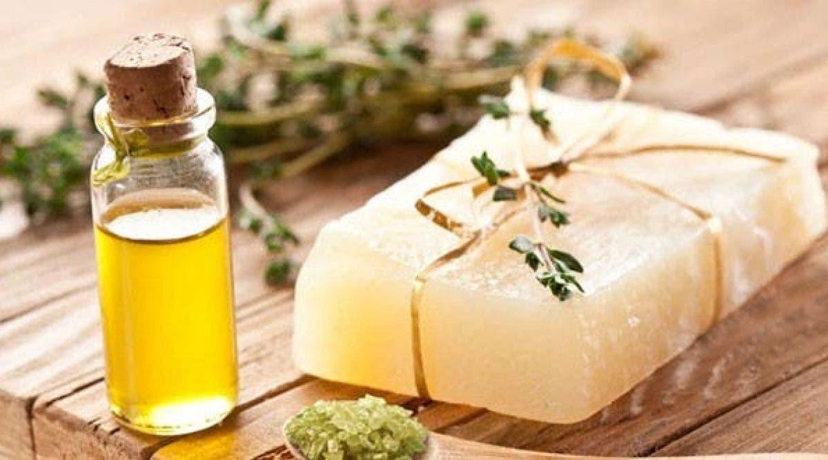 7 bienfaits de l'huile de théier