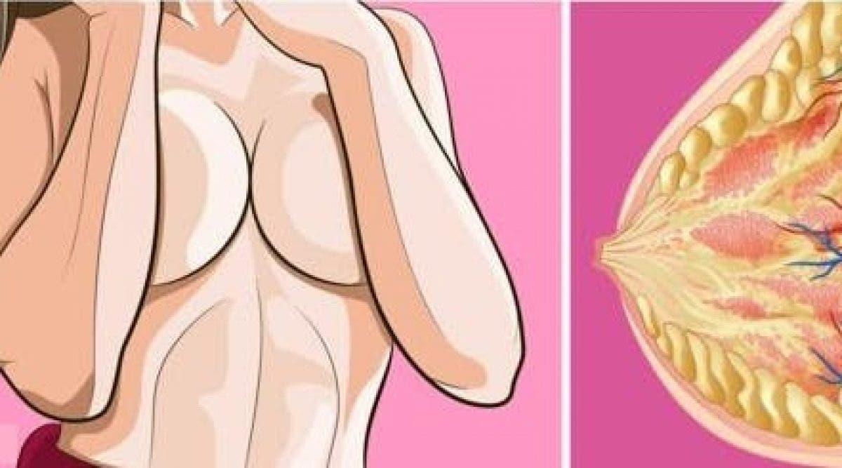 8 choses géniales qui arrivent à votre corps lorsque vous arrêtez de porter des soutiens-gorge