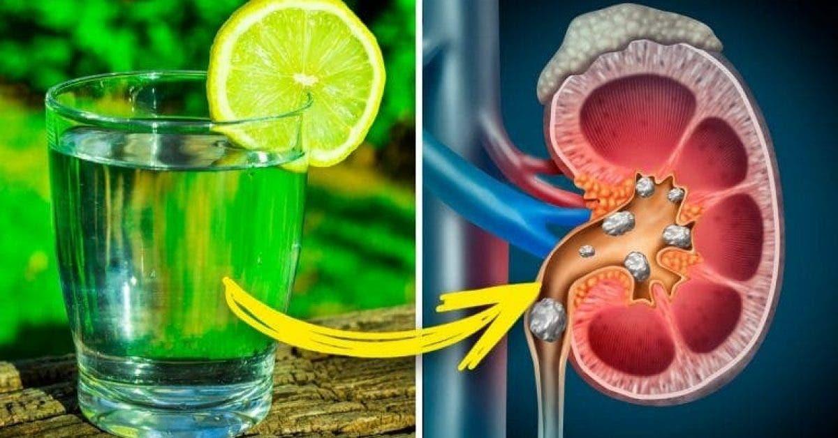citron fait à votre corps que vous devriez savoir