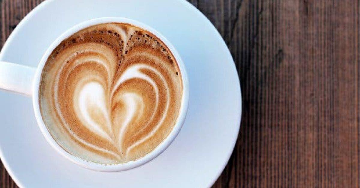 8 choses que vous ignorez sur cafe 2