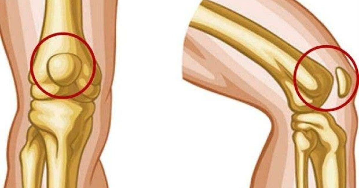 8 exercices simples contre les douleurs aux genoux 1