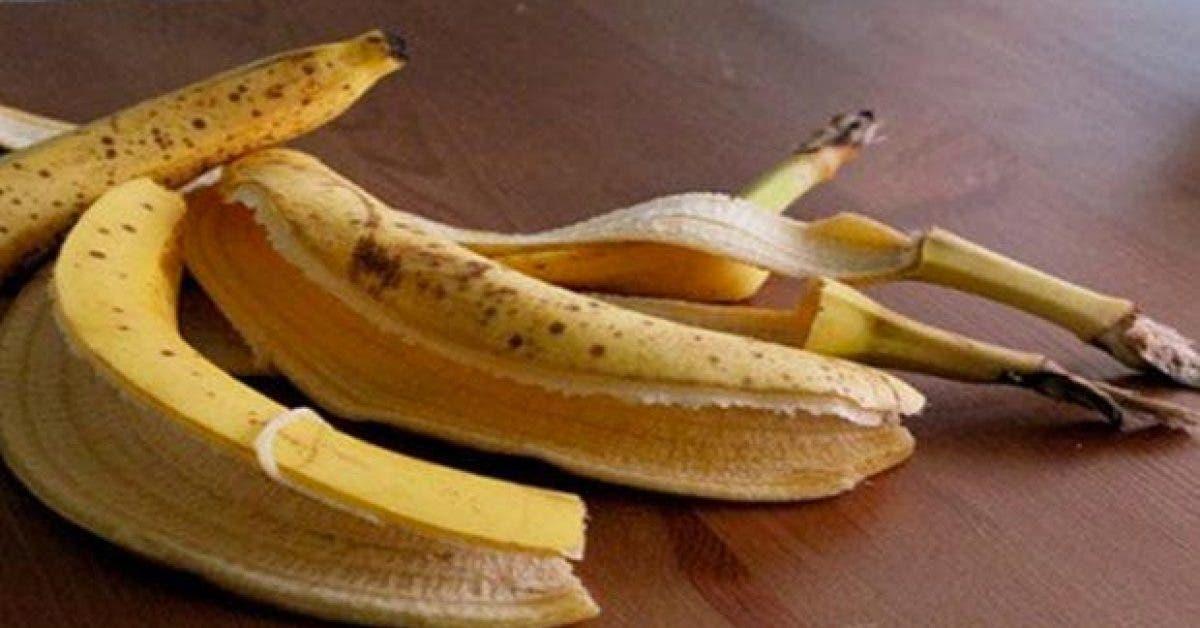 8 raisons de ne plus jeter la peau de banane1 1