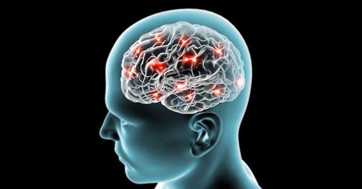 8 signes de la maladie dalzheimer que vous ne devez pas ignorer11