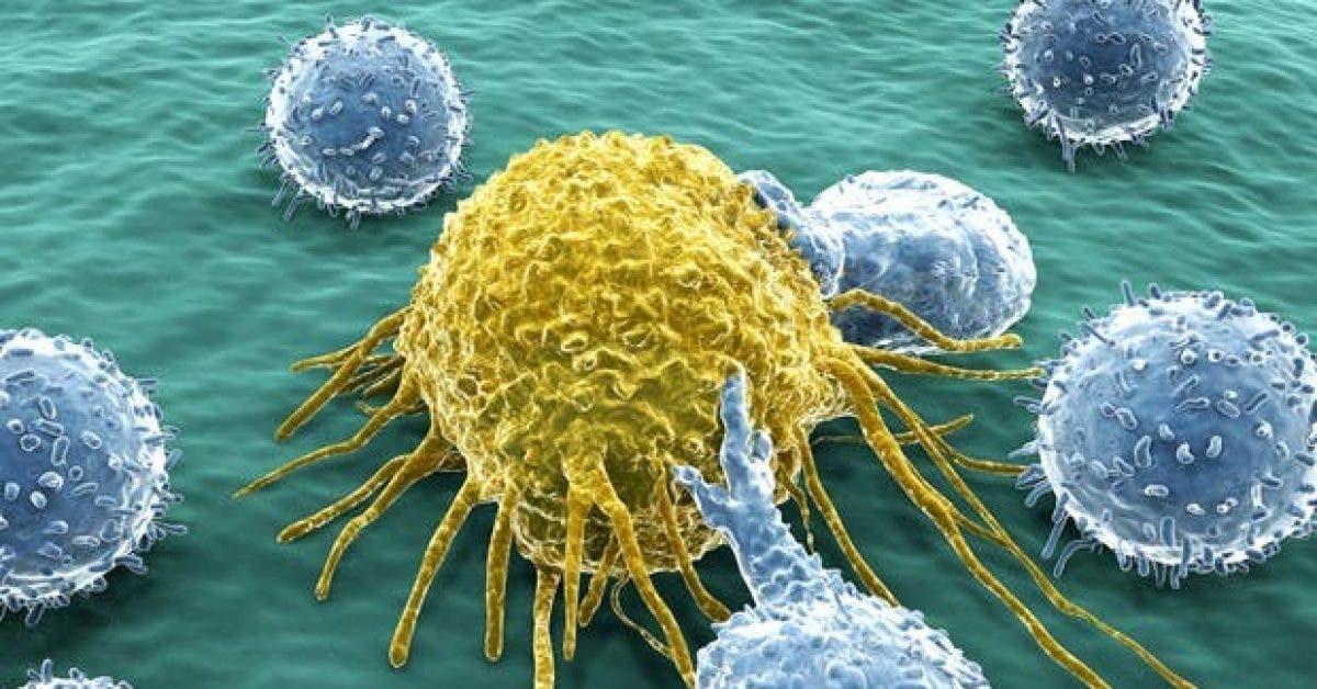 9 aliments anti cancer que vous devez absolument connaitre 1