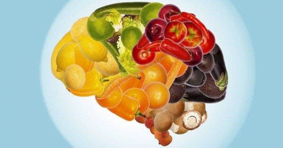 9 aliments pour ameliorer la sante du cerveau et le rajeunir de 10 ans 1