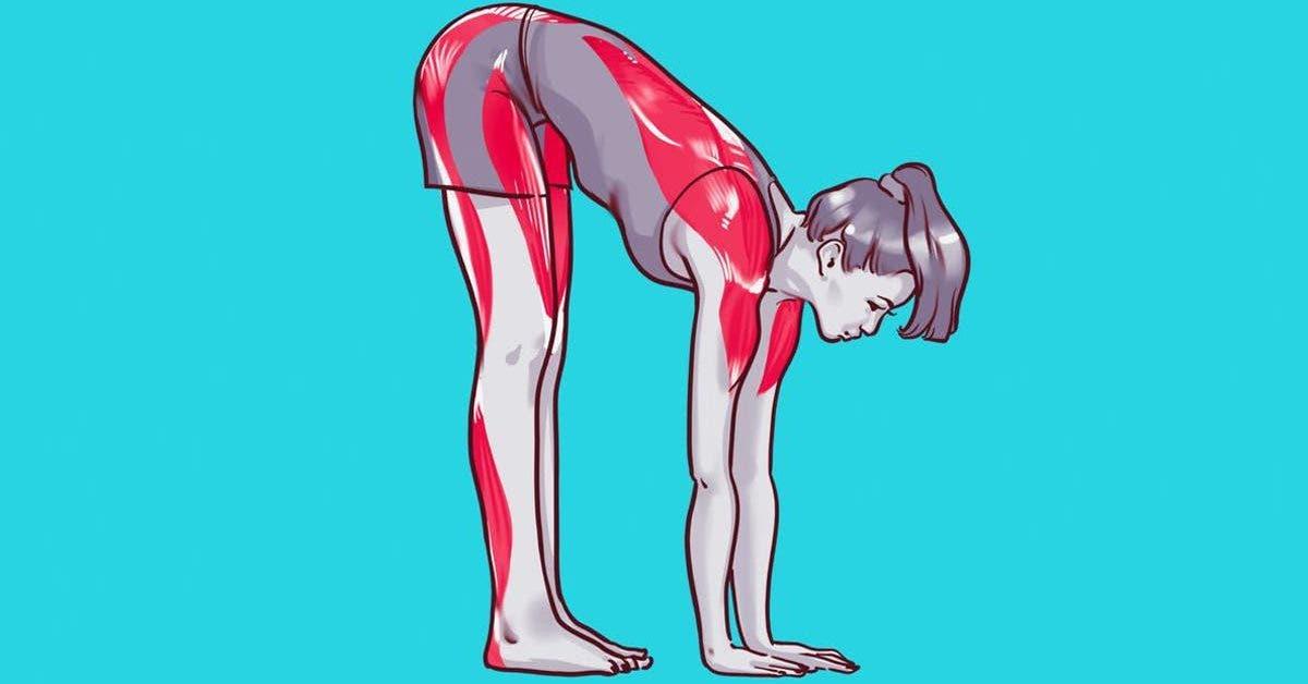 9-exercices-detirements-qui-vous-aide-a-augmenter-votre-metabolisme